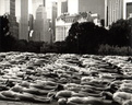 spencer tunick 1996 new york central park