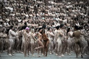 12996807360 natitud spencer tunick