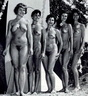 Nudists Pageants Festivals 109