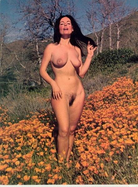 Nude diane webber Diane Webber