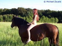 nude with horse 102