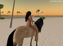 nude with horse 17