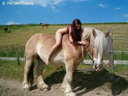nude with horse 120